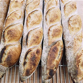 Traditional French Baguette NIZI